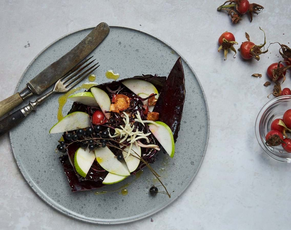 Rødkålsskål med solbær og hyben