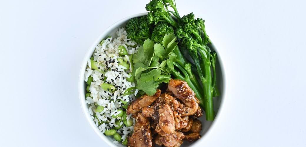 Rice & pork bowl gris med teriykai og rissalat