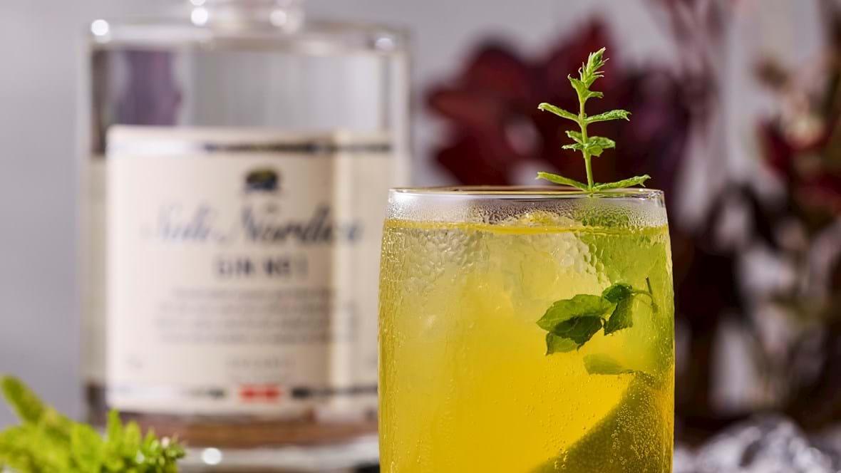 Gin Hass med mangosirup