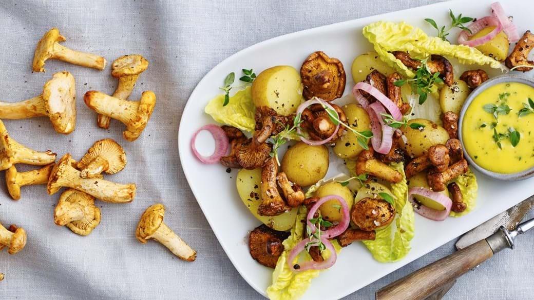 Frokostsalat med smørstegte kantareller og nye kartofler