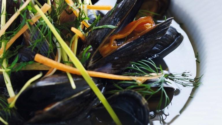 Limfjordsmuslinger i økologisk øl med urter, dild og persille