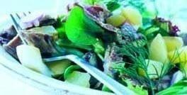 Salat med strimler af kalvekød