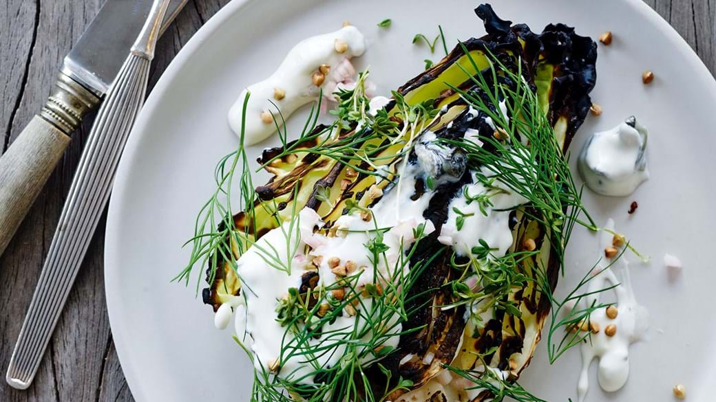 Grillet spidskål med østersyoghurt, urter og ristet boghvede
