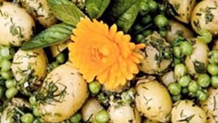 Kartoffelsalat med krydderurter og flute