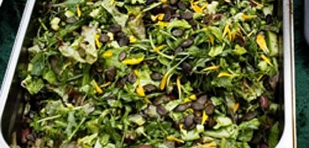 Grøn salat med krydderurter og græskarkerner