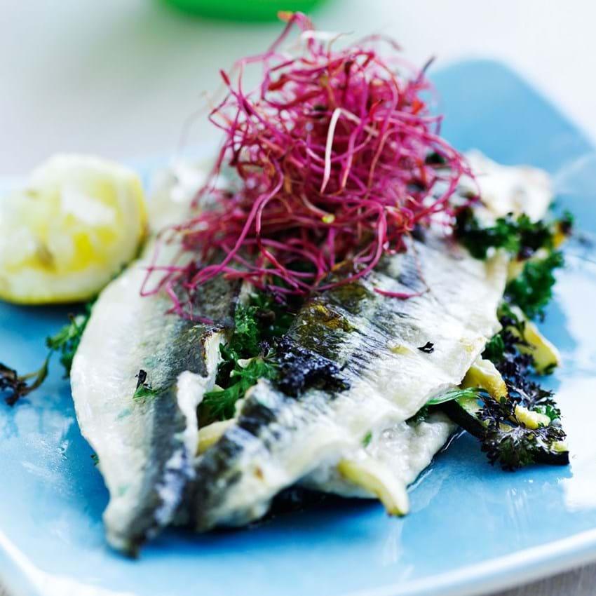 Grillet makrel, sild eller hornfisk