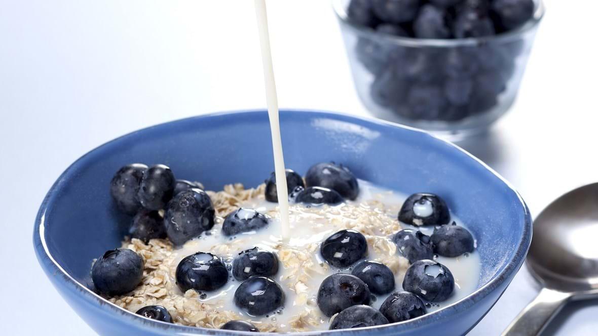 Havregryn med blåbær og mælk