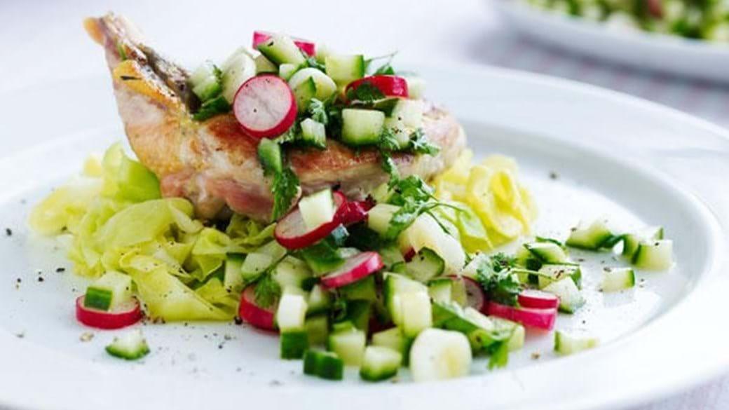 Kylling med agurkesalsa og dampet spidskål