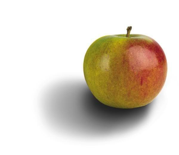 Supergrød med æbler