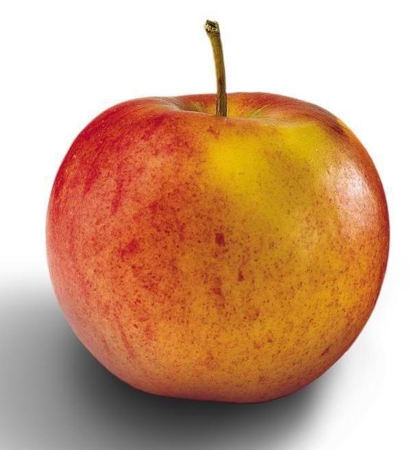 Æbletzatiki