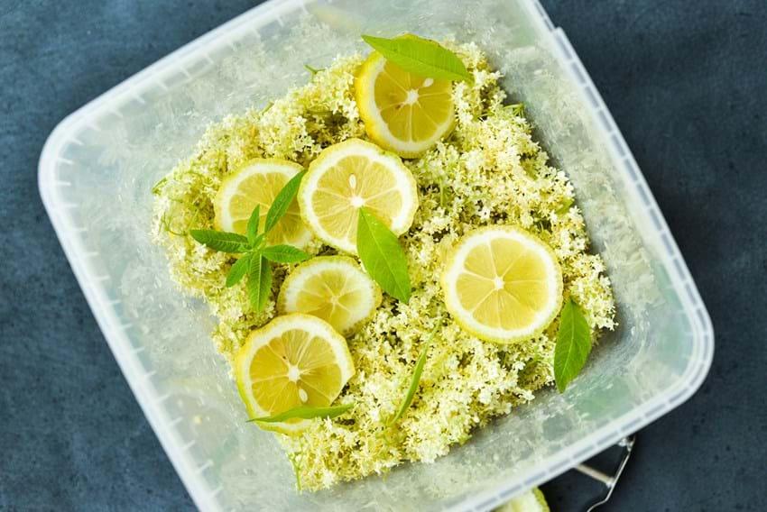 Hyldeblomstsirup med citrus